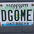 Leslie's License plate